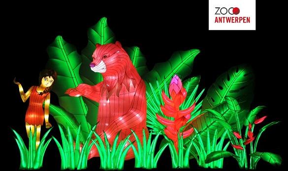 Nieuw Lichtfestival Van De Makers Van China Light In De Antwerpse Zoo Cartoon Productions